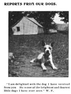 ARL Boston 1907 (p14)