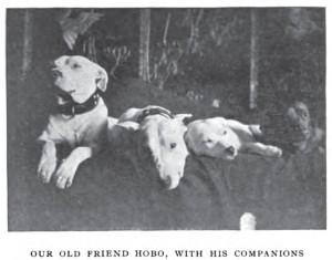 ARL Boston 1908_Hobo and Friends