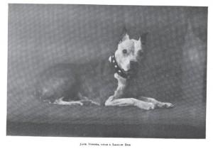 ARL Boston 1911_Jane