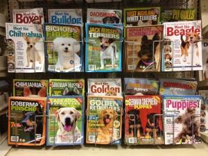 Display at PetSmart