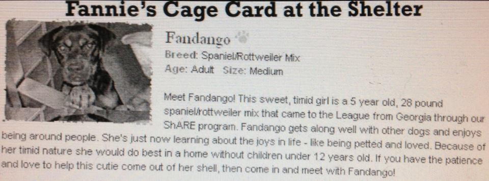 Fannie's Cage Card