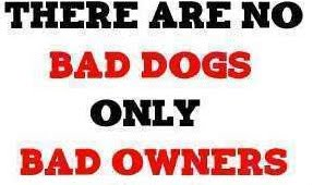 Bad Dogs Bad Owners