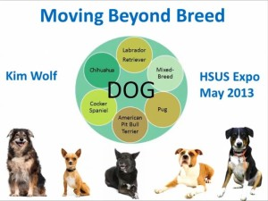 Moving Beyond Breed: HSUS Expo