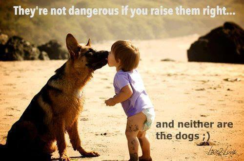 Not Dangerous If You Raise Them Right