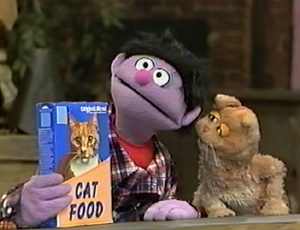 Sesame Street Cat