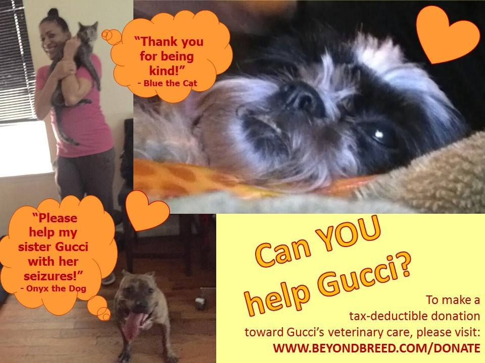 Gucci_Needs_Help