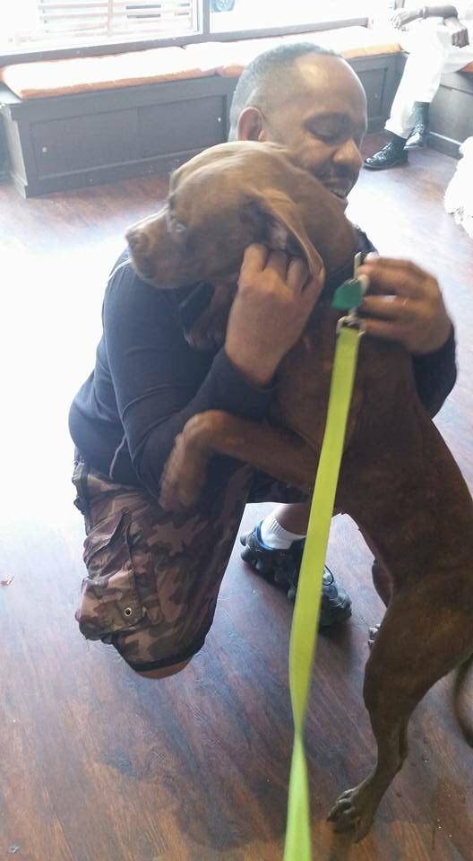 Derek Picking Up Sheeba From Her Spay Surgery: October 2015